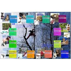 Календарь арбо КРОК 2020